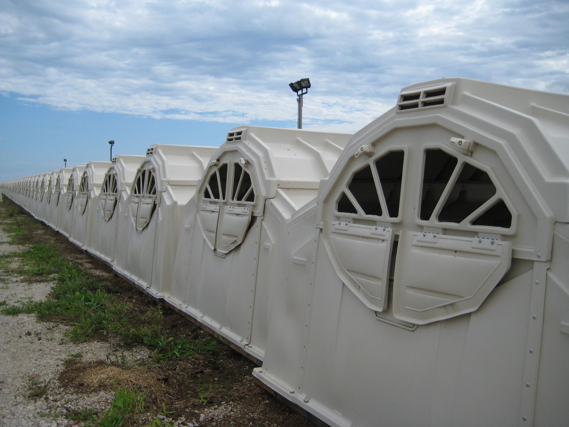 Lange Reihe MultiMax-Hütten von der Rückseite